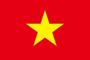 越南旅游签证所需材料
